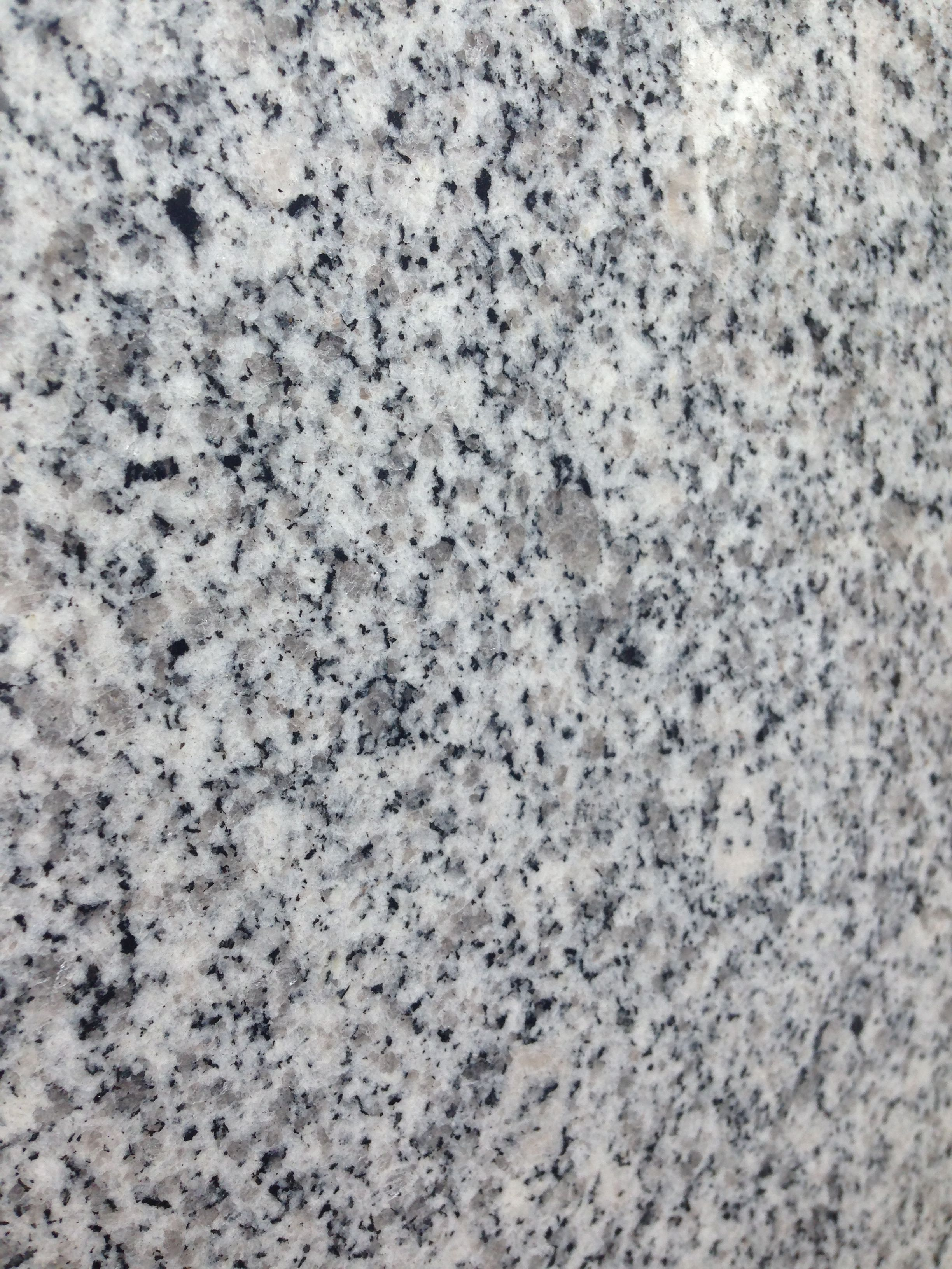 Luna Pearl Granite : Luna pearl granite best colors for countertops