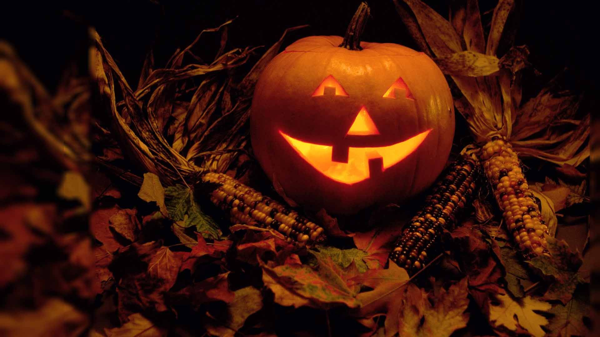 Download The Latest Happy Halloween Hd Images Wallpapers Pictures Photos Free Halloween Wallpaper Scary Halloween Pumpkins Halloween Desktop Wallpaper