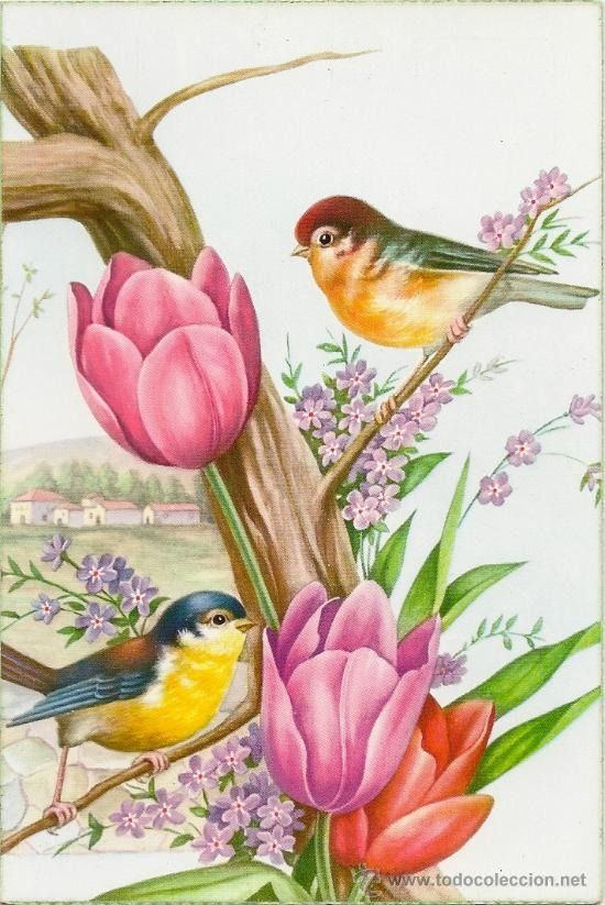 Heavenly Photo Bird Art Flower Painting Birds Painting