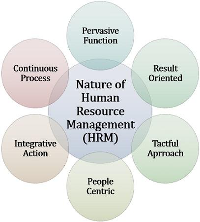 Human Resource Management Hrm Human Resource Management Human Resource Management System Human Resources