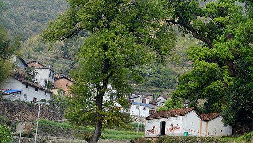 im Dorf mit kleinem Tempel