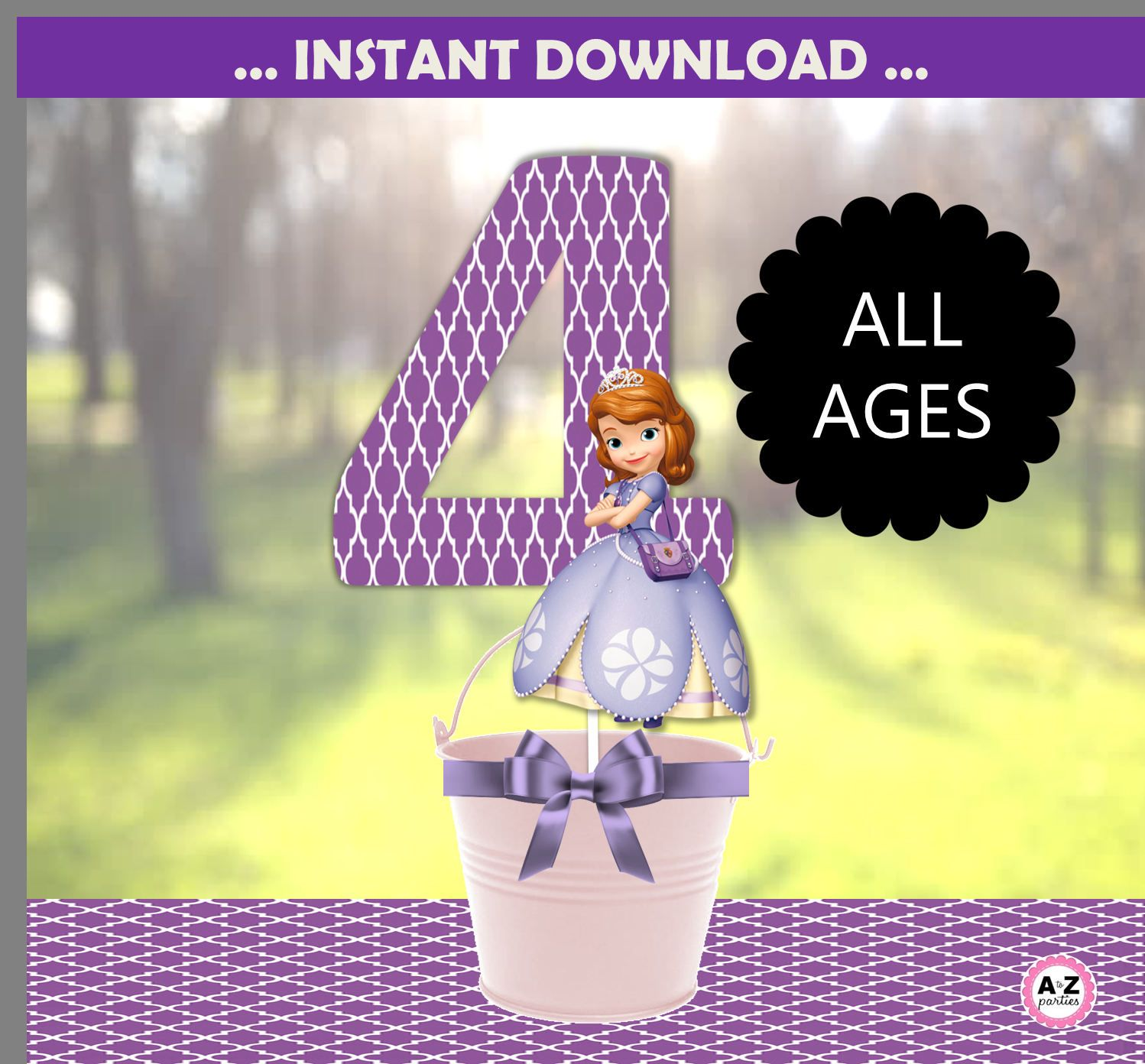 Sofia The First Centerpiece Designs Party Decorations
