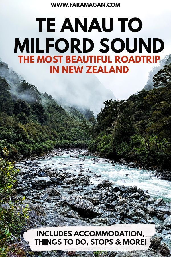 Photo of Te Anau To Milford Sound: The Complete Guide | Faramagan