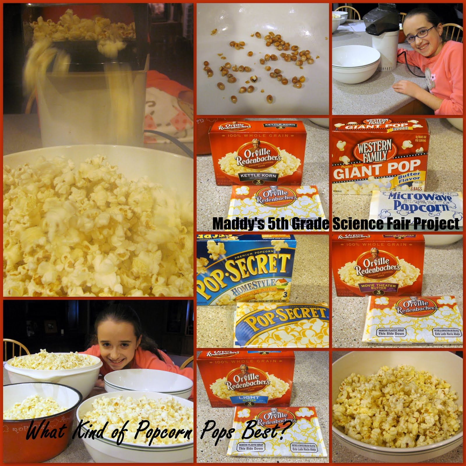 5th Grade Science Projects Popcorn On Top Of That Maddy Had Put It Off Until The Last Days