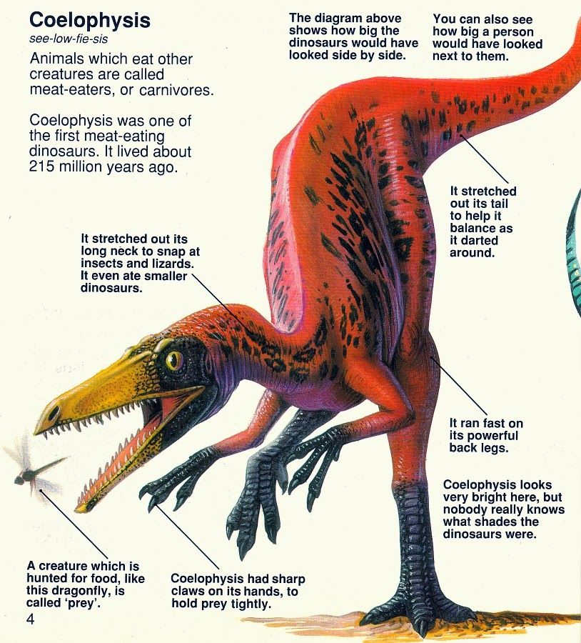 Love in the Time of Chasmosaurs: Vintage Dinosaur Art: The Usborne Book of Dinosaurs #dinosaurart
