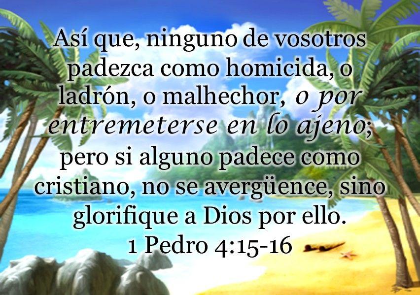 1 Pedro 4 15 16