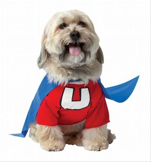 Pet Dog Licensed Deluxe Underdog Super Hero Costume W// Cape