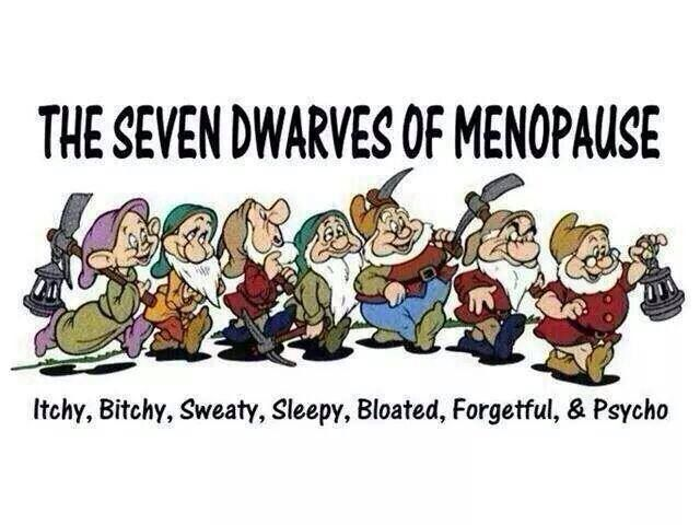 The Seven Dwarves Of Menopause Itchy Bitchy Sweaty Sleepy