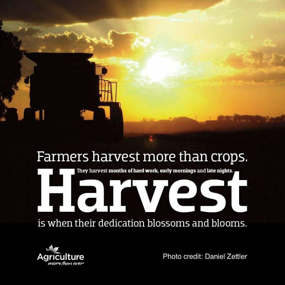 Ag Quote Pinkaren Kenneyoles On Agriculturefarming  Pinterest