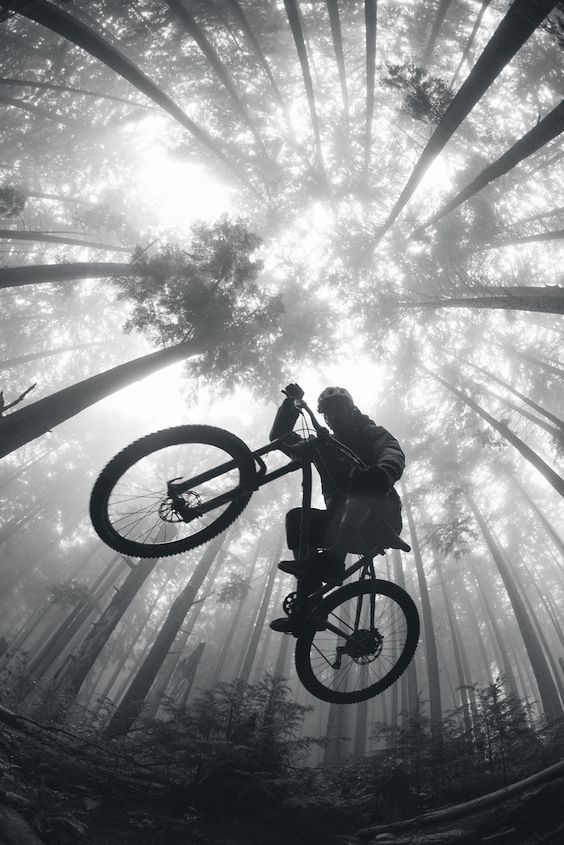The Best Ways To Purchase A Mountain Bike Dengan Gambar Sepeda