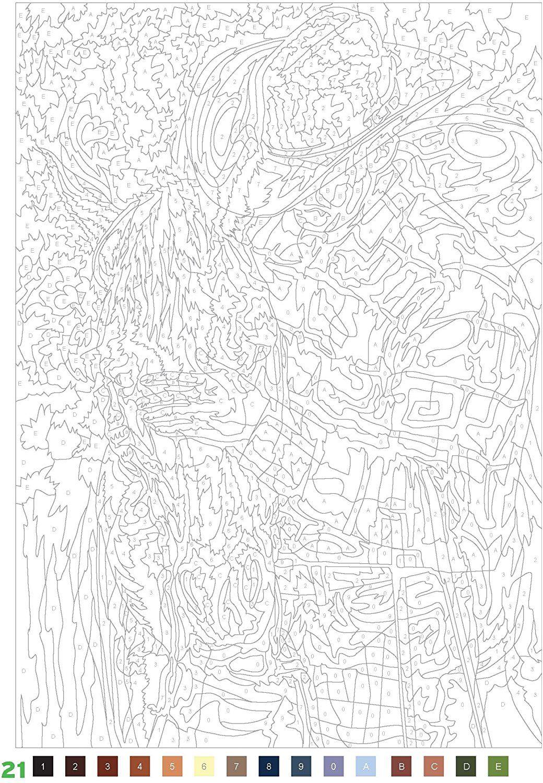 coloriages mystères  100 nouveaux coloriages amazonde