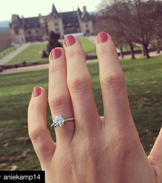 Petite Micropave Diamond Engagement Ring In Platinum 1 10 Ct Tw