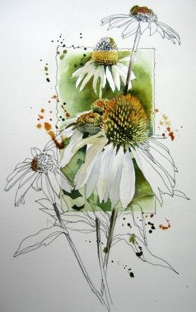 Akvareller - www.audrye.net - love the way that only part of the sketch is watercoloured