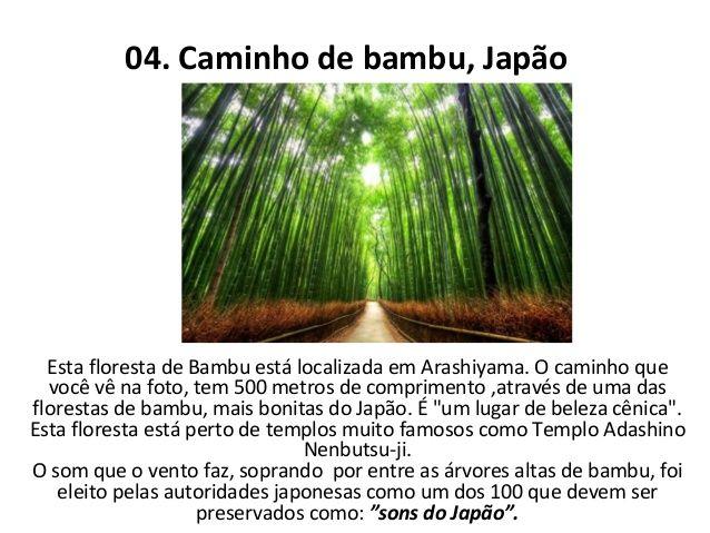 10 tuneis feitos com árvores!