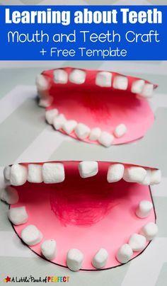Lernen Sie mehr über Zähne putzen & putzen –   – Water