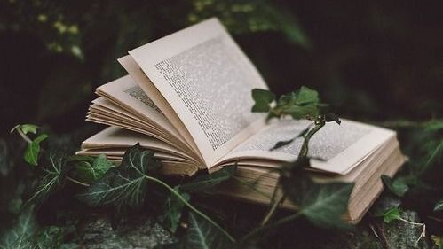 pin on british literature