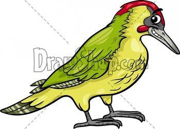 DrawShop | Royalty Free Cartoon Vector Stock Illustrations & Clip Art