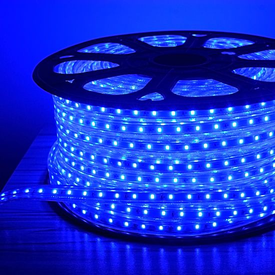 Blue LED Rope Light Outdoor Event Lighting LED Decorative