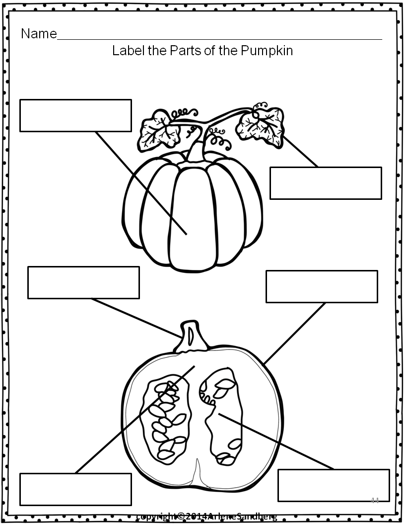 Pumpkin Parts Picture Fact Cards And Labeling Activity Classroom Freebies Parts Of A Pumpkin Pumpkins Kindergarten Labeling Activities [ 1056 x 816 Pixel ]