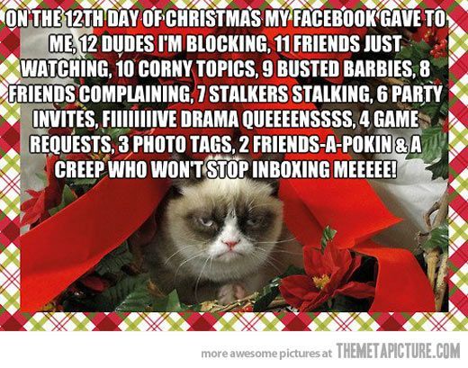 Grumpy Cat Christmas Memes.On The 12th Day Of Christmas Lolz Grumpy Cat Christmas