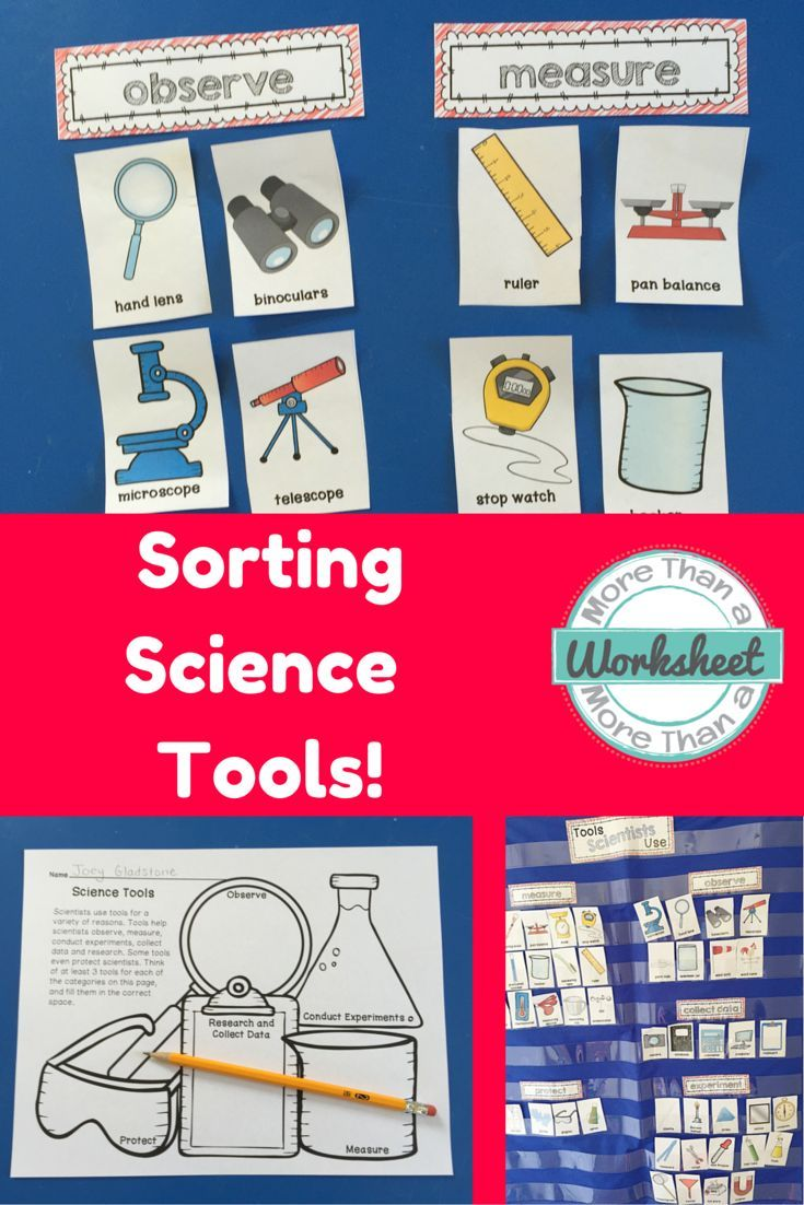 Worksheets Scientific Tools Worksheet science tool sort tools game ideas and worksheets use these cards to into different categories observe measure experiment collect data protect there are also s
