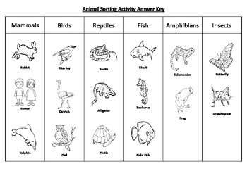 animal sorting activity fun activities worksheets and activities. Black Bedroom Furniture Sets. Home Design Ideas