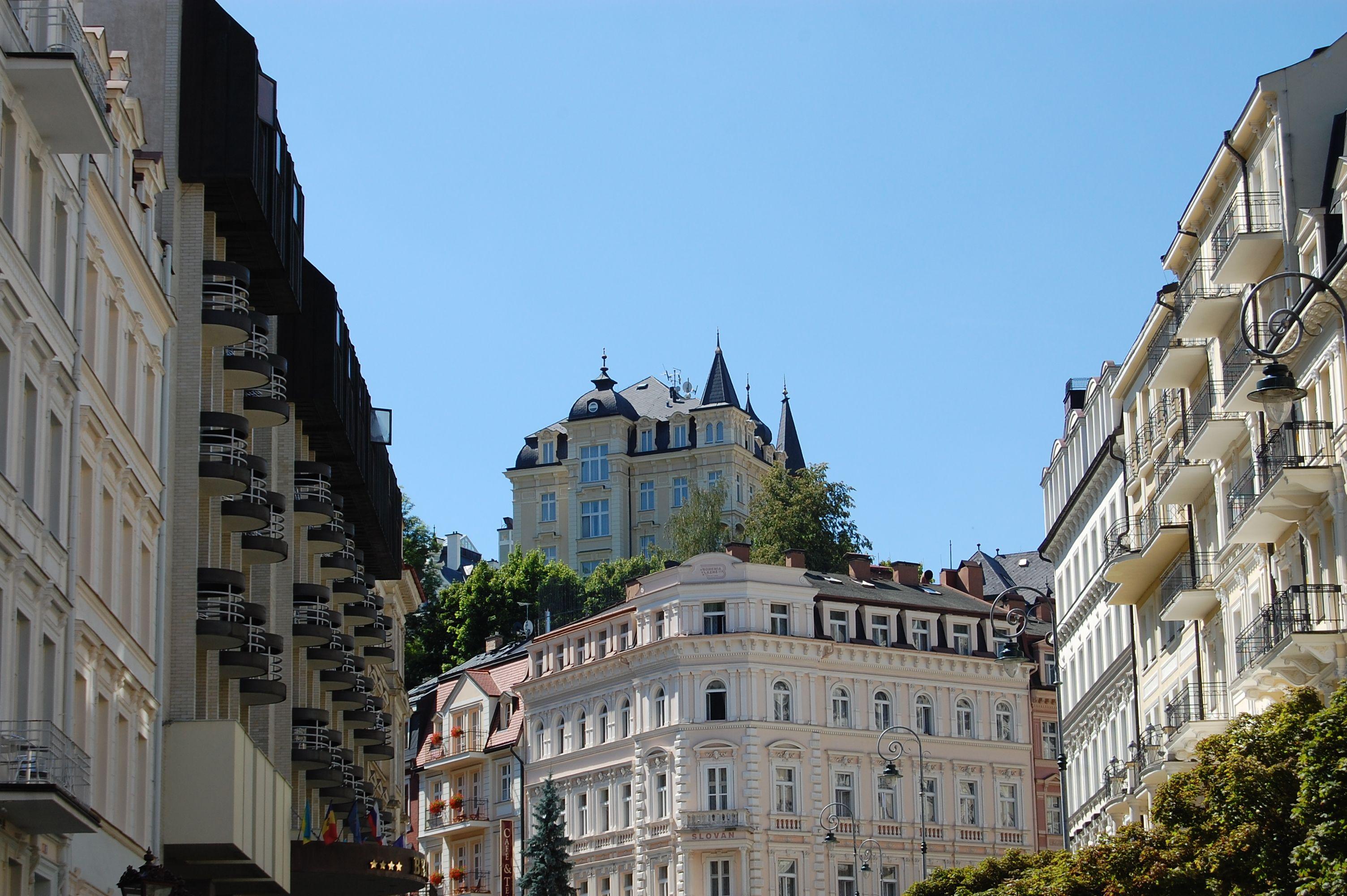 Productos famosos de Karlovy Vary son las Rosas Petrificadas en el agua termal, las Galletas de Karlovy Vary, la porcelana producida en Karlovy Vary mismo y en Chodov y Sal mineral para curas en el baño y sal mineral potable.