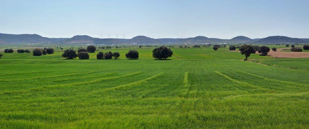 Cuerda de la doblona cerca de alatoz Albacete.