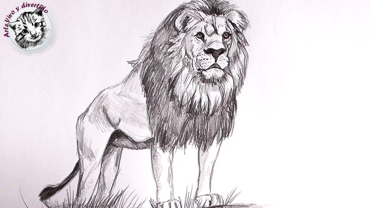 Aprende Como Dibujar Un Leon Con Lapiz Paso A Paso Muy Facil Como Dibujar Pixel Art Dibujo De Caballos