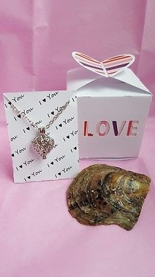 #Trending03 - Akoya Oyster Pearl Valentine's Day Gift Set Heart https://t.co/EU8P0SLiRS Ebay https://t.co/t4X7or50QQ