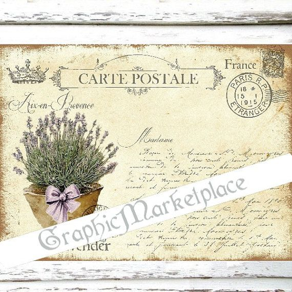 Carte Postale Lavender Flowers Provence Large Image Instant