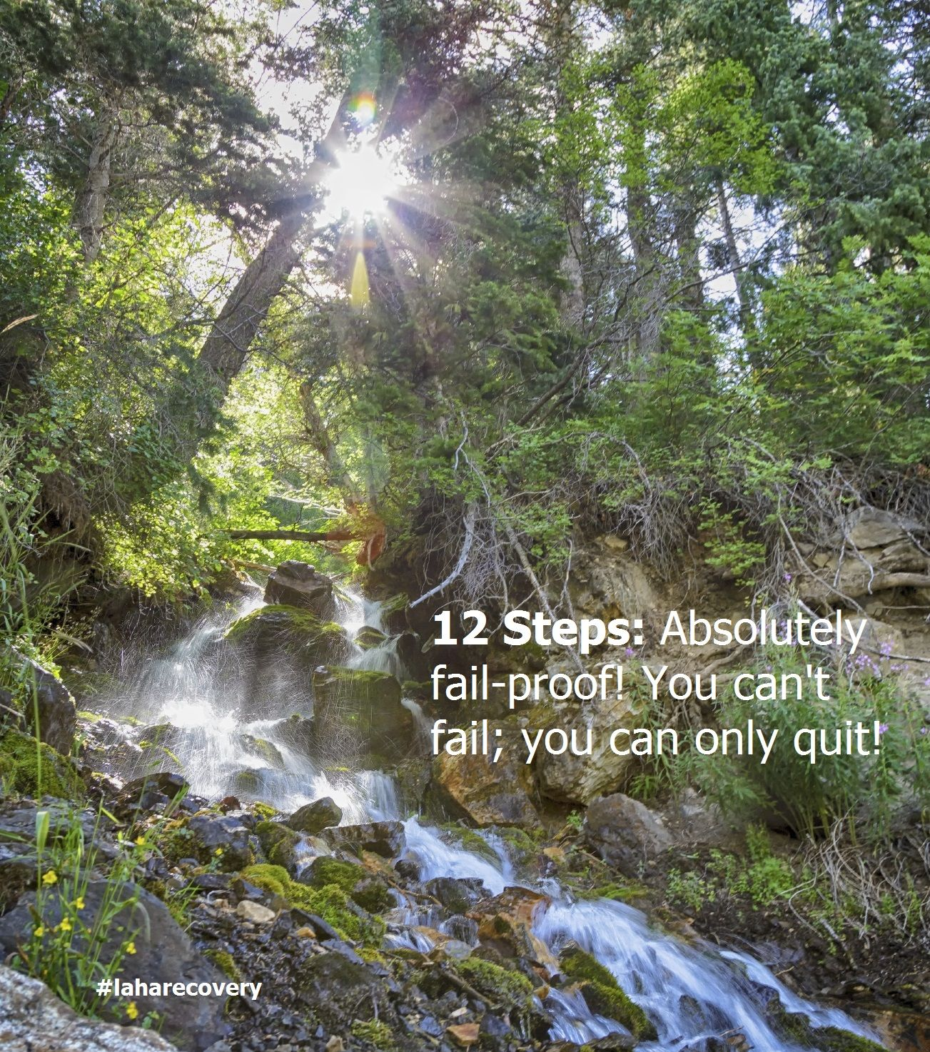 12 Steps Absolutely failproof! You can't fail; you can
