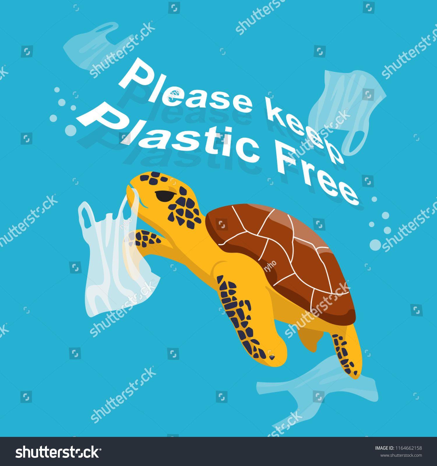 Minimalist sea turtles worksheets ideas in 2021