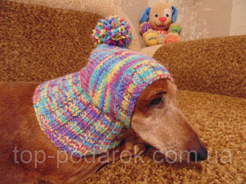 шапка для собакишапка для таксыодежда для домашних животных