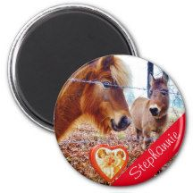 horse Valentine Heart Red Fridge Magnet