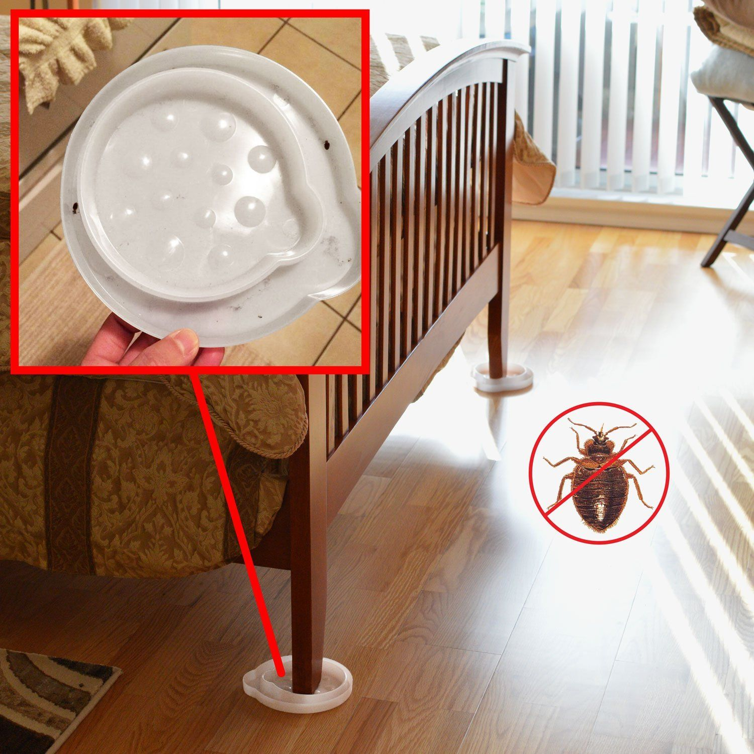 Robot Check Bed bug trap, Bug trap, Bed bugs