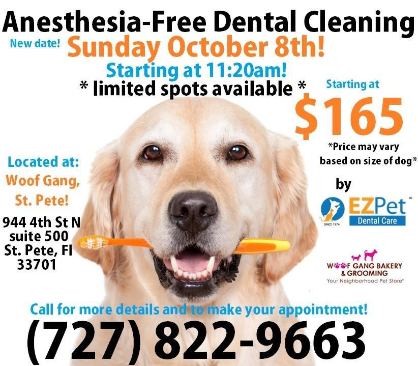 The AnesthesiaFree Dental Cleaning has been moved to