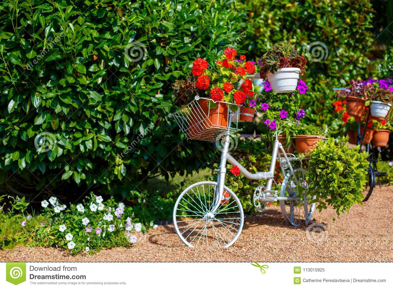 Photo about Bicycle with flowers as decoration in the Park
