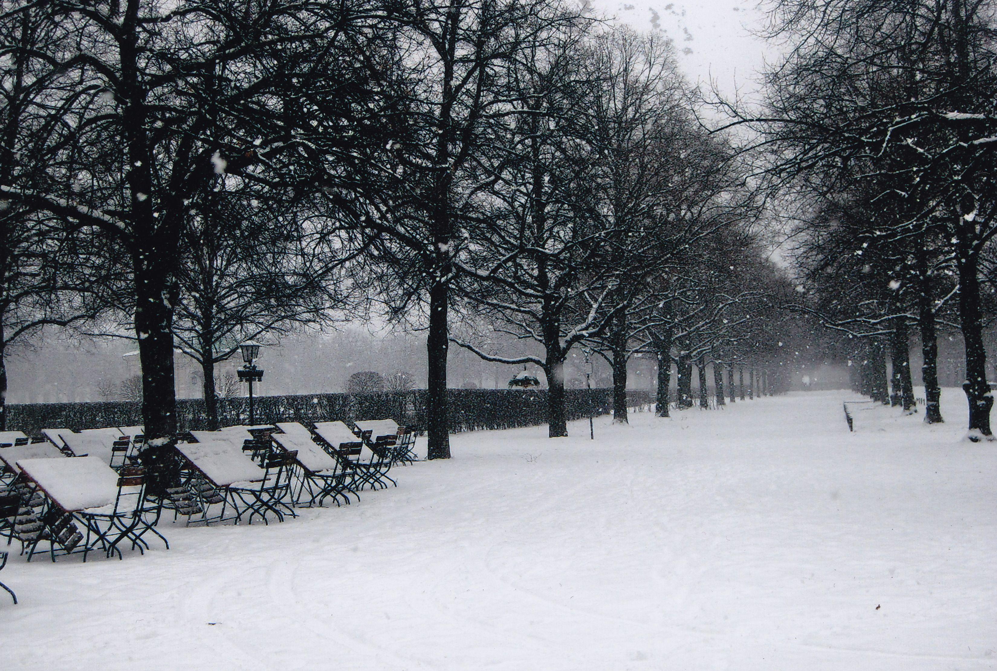 Garten Im Winter münchen der englische garten im winter favorite places and