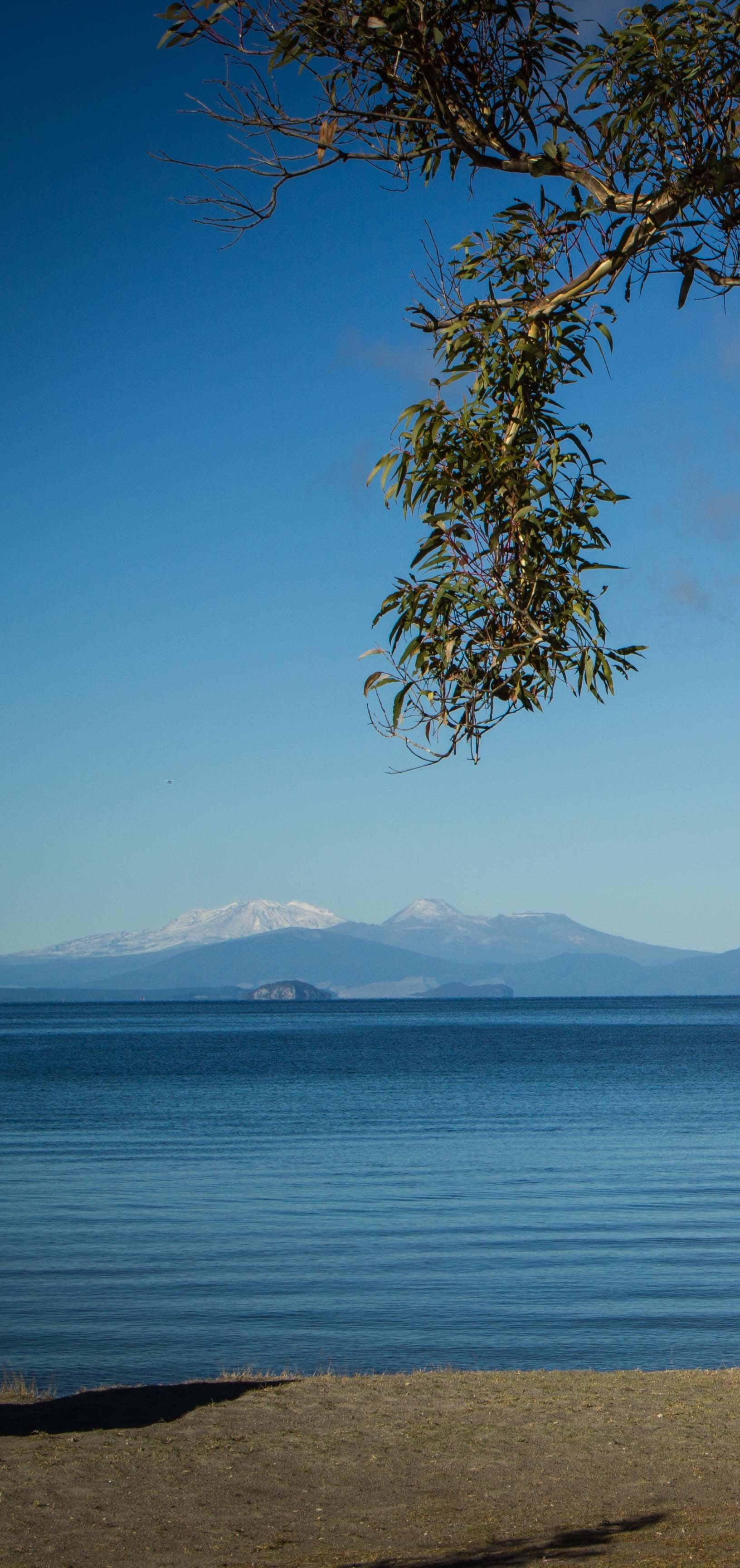 Lake Taupo - looking across to Mt Ruapehu on left and Mt Ngauruhoe in centre ( aka Mt Doom ) and Mt Tongariro on right.
