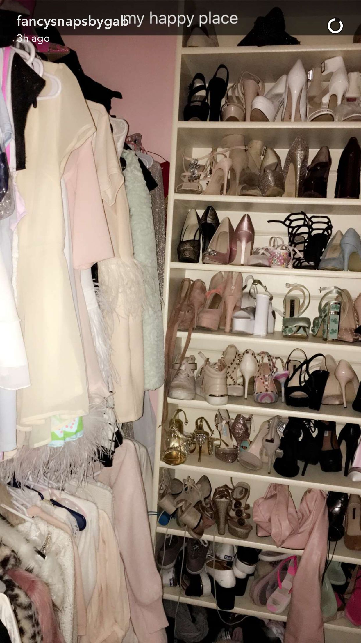 gabi's closet is my dreams