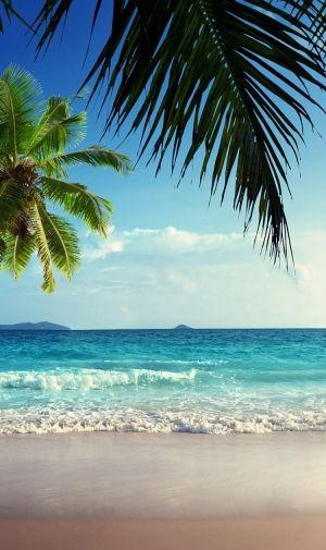 南国のトロピカルな海のiphone壁紙 壁紙キングダム スマホ版 ビーチの壁紙 ランダム写真 美しい風景