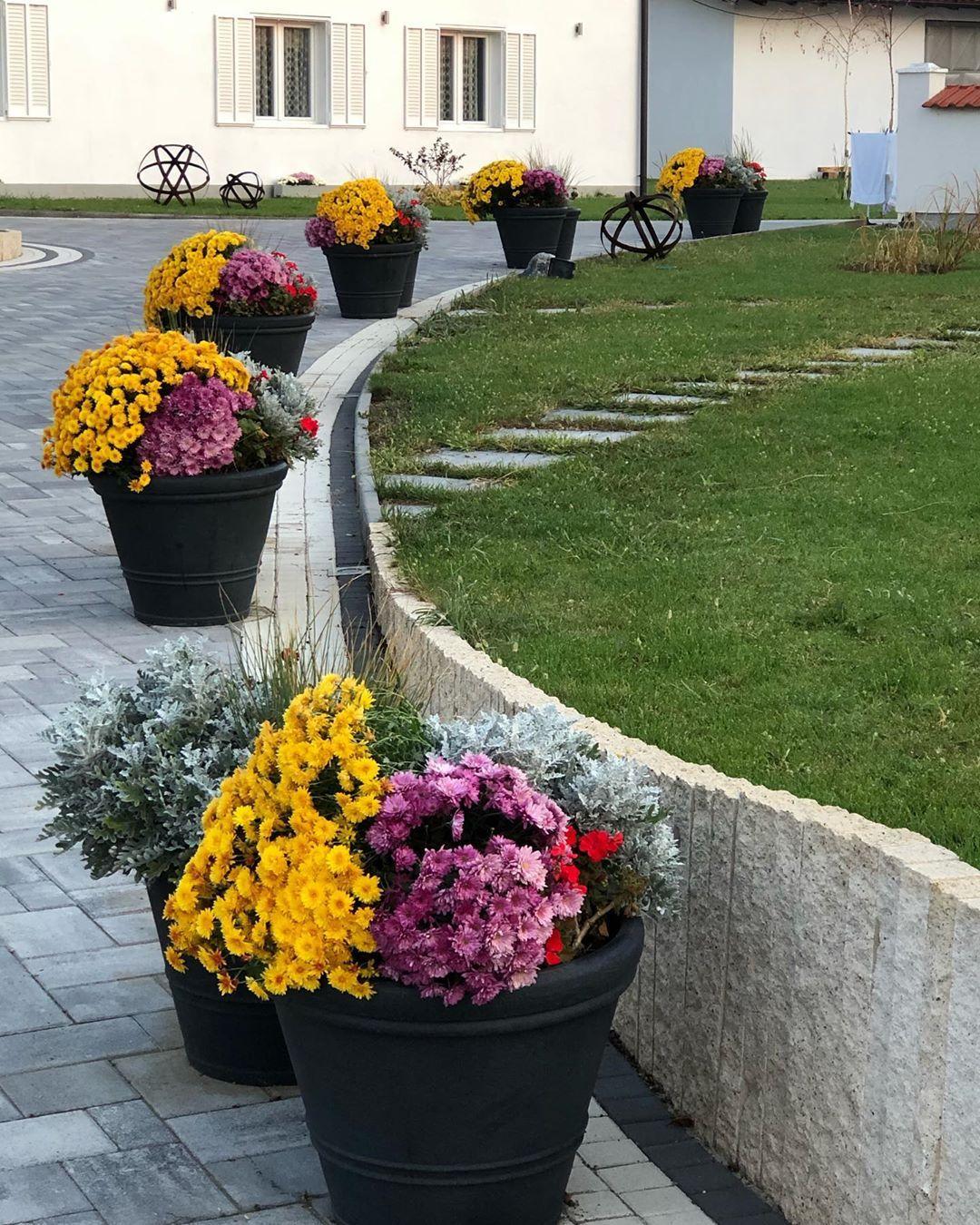 Blumen Blumendeko Garten Gartenzeit Gartenideen Gartenliebe Garden Gardens Gardening Gardendesign Flowers Flower Hri Garten Ideen Garten Gardening