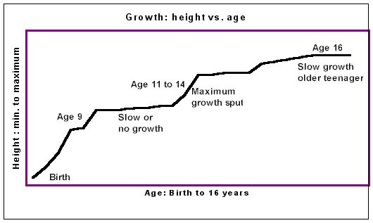 growth spurt boy ages
