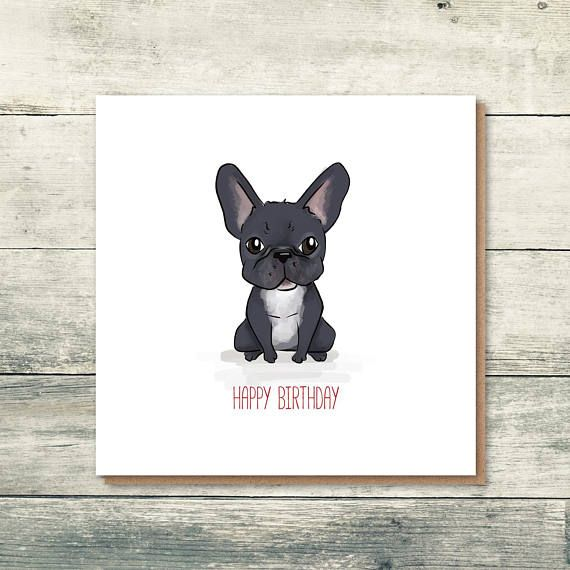 French Bulldog Birthday Card Frenchie Card French Bulldog