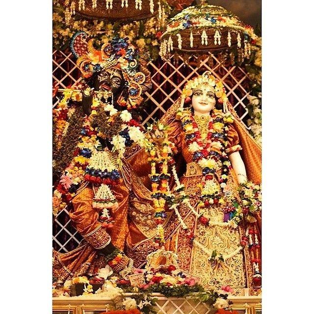 """"""" Janmastami darsan) #Amazing #mayapur #dham #haribol """""""