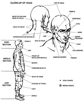 Vital Target Areas Self Defense Tips Martial Arts Learn Krav Maga