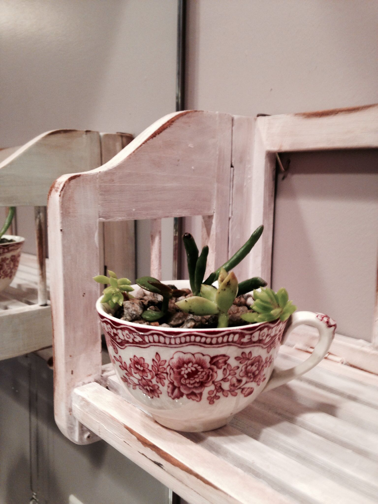 Cute teacups that you're not using or chipped??...turn them into cute mini succulent dish gardens for a small shelf or window sill