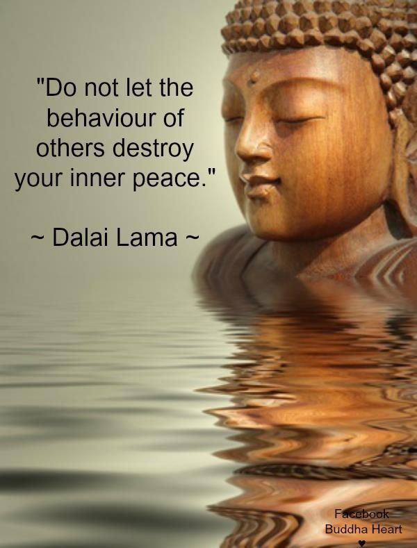 Image result for dalai lama quotes on slowing down