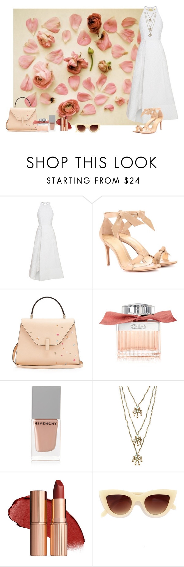 """""""Untitled #736"""" by fufuun ❤ liked on Polyvore featuring Alex Perry, Alexandre Birman, Valextra, Chloé, Givenchy, Blue Hippy and Quay"""